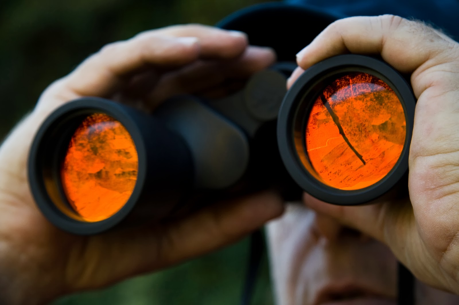 How Does a Corporate Investigator Work?