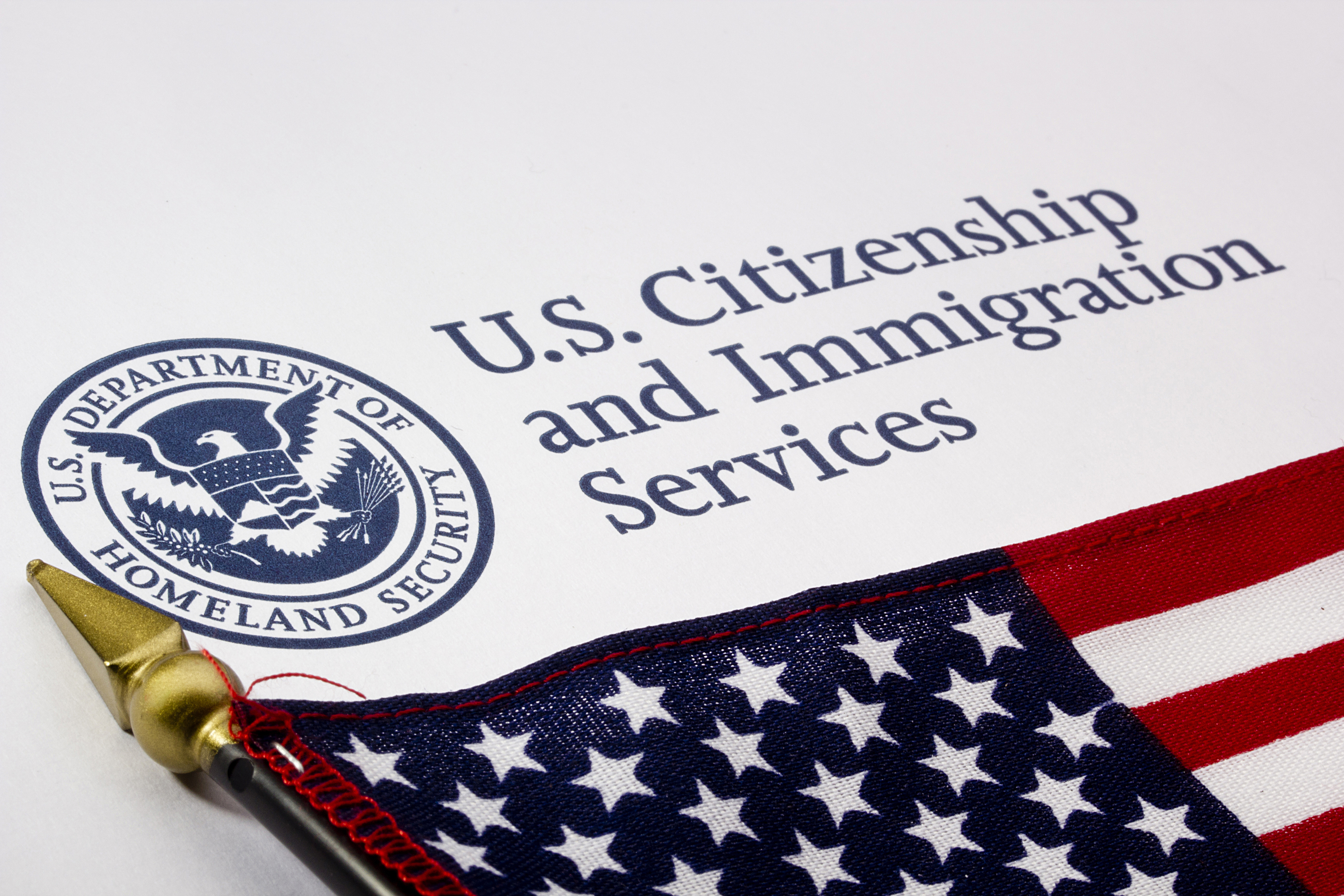 Immigrations Process Seems Easy With Expert Professionals